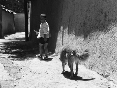 boy walking down a walled street, looking back at a dog following him