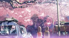 two students facing a street pink with cherry blossoms